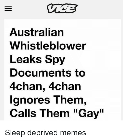 "4chan, Memes, and Sleep: Australian  Whistleblower  Leaks Spy  Documents to  4chan, 4chan  gnores T hem,  Calls Them ""Gay"" Sleep deprived memes"
