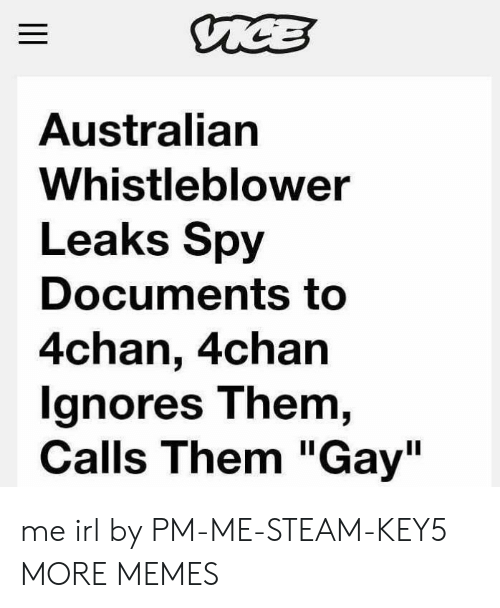 "4chan, Dank, and Memes: Australian  Whistleblower  Leaks Spy  Documents to  4chan, 4chan  gnores T hem,  Calls Them ""Gay"" me irl by PM-ME-STEAM-KEY5 MORE MEMES"