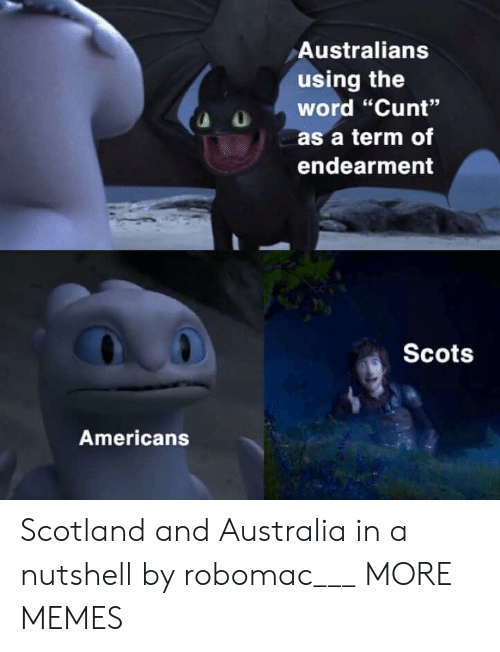 "Dank, Memes, and Target: Australians  using the  word ""Cunt""  as a term of  endearment  Scots  Americans Scotland and Australia in a nutshell by robomac___ MORE MEMES"