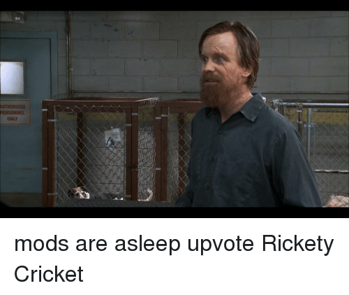 Authorized Personnel Only Cricket Meme On Me Me