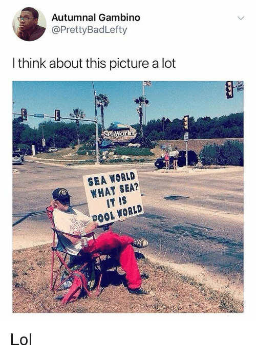 Lol, Memes, and Sea World: Autumnal Gambino  @PrettyBadLefty  l think about this picture a lot  SEA WORLD  WHAT SEA?  IT IS  DOOL WORLD Lol