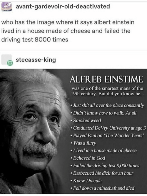 Albert Einstein, Driving, and God: avant-gardevoir-old-deactivated  who has the image where it says albert einstein  lived in a house made of cheese and failed the  driving test 8000 times  stecasse-king  ALFREB EINSTIME  was one of the smartest mans of the  19th century. But did you know he...  Just shit all over the place constantly  Didn't know how to walk. At all  Smoked weed  .Graduated De Vry University at age 3  Played Paul on The Wonder Years'  Was a furry  Lived in a house made of cheese  Believed in God  Failed the driving test 8,000 times  Barbecued his dick for an hour  Knew Dracula  Fell down a mineshaft and died