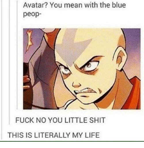 What the fuck avatar