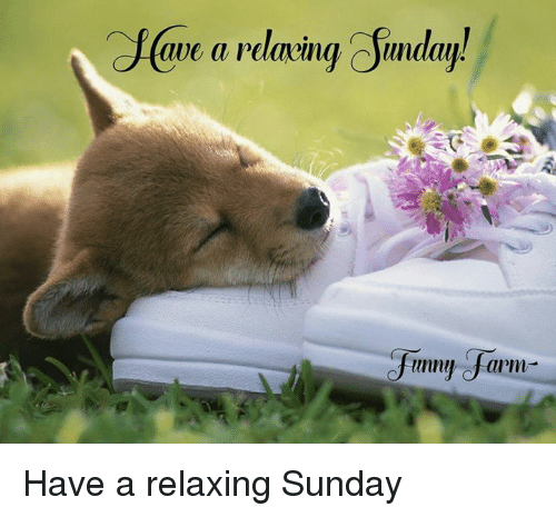 Image result for Have a relaxing Sunday