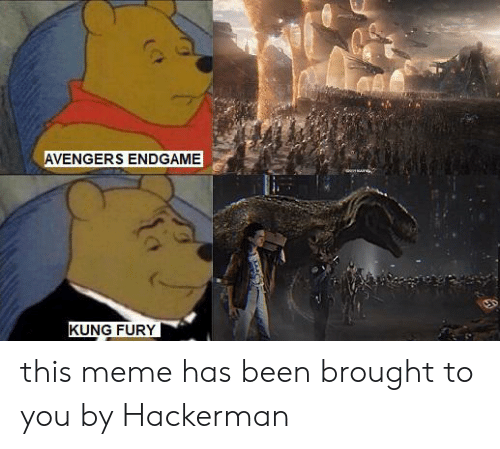 Meme, Reddit, and Avengers: AVENGERS ENDGAME  KUNG FURY this meme has been brought to you by Hackerman