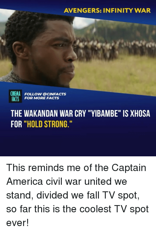 "America, Captain America: Civil War, and Facts: AVENGERS: INFINITY WAR  CINEMA FOLLOW @cINFACTS  ACTS FOR MORE FACTS  THE WAKANDAN WAR CRY ""YIBAMBE"" IS XHOSA  FOR ""HOLD STRONG This reminds me of the Captain America civil war united we stand, divided we fall TV spot, so far this is the coolest TV spot ever!"