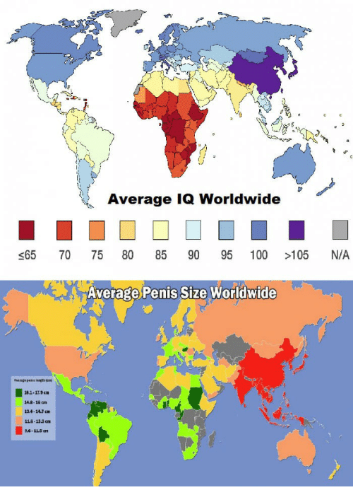 average penis length by country