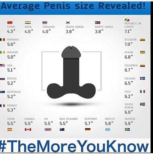 What Is The Size Of Penis