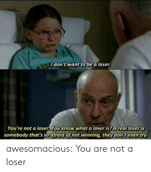 Tumblr, Blog, and Com: awesomacious:  You are not a loser