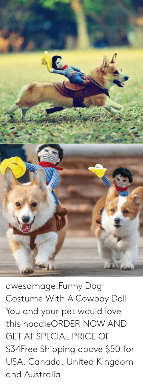 Clothes, Funny, and Love: awesomage:Funny Dog Costume With A Cowboy Doll You and your pet would love this hoodieORDER NOW AND GET AT SPECIAL PRICE OF $34Free Shipping above $50 for USA, Canada, United Kingdom and Australia