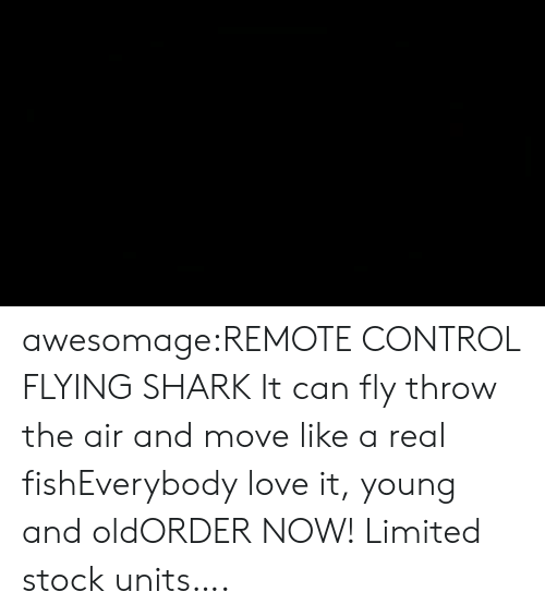 Christmas, Love, and Party: awesomage:REMOTE CONTROL FLYING SHARK It can fly throw the air and move like a real fishEverybody love it, young and oldORDER NOW! Limited stock units….