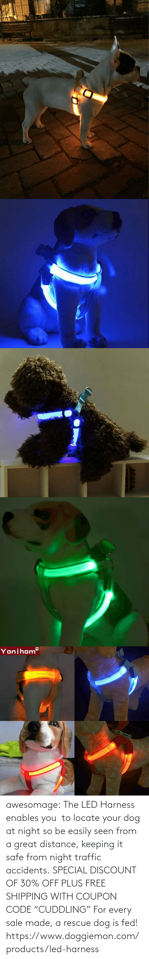 """Traffic, Tumblr, and Blog: awesomage:   The LED Harness enables you to locate your dog at night so be easily seen from a great distance, keeping it safe from night traffic accidents. SPECIAL DISCOUNT OF 30% OFF PLUS FREE SHIPPING WITH COUPON CODE """"CUDDLING"""" For every sale made, a rescue dog is fed!   https://www.doggiemon.com/products/led-harness"""