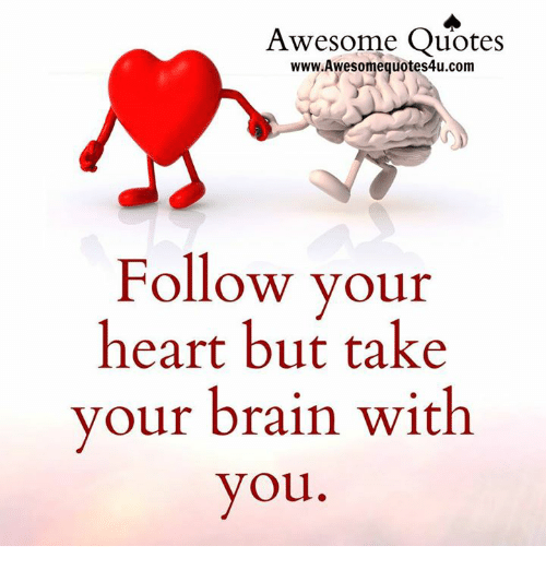 Awesome quotes wwwawesomeguotes4ucom follow your heart but take your brains memes and brain awesome quotes awesomeguotes4u follow your altavistaventures Images