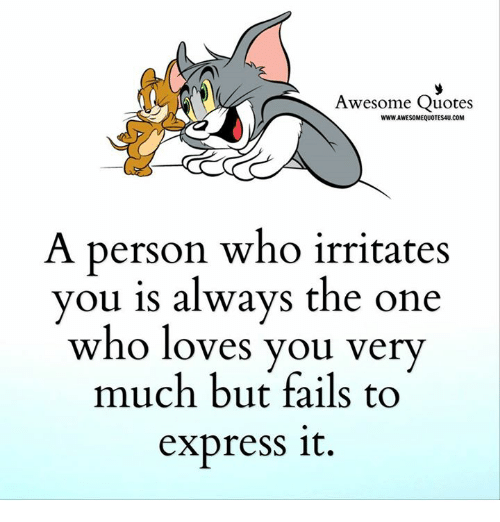 Awesome Quotes WWWJAWESOMEQUOTES4UCOM a Person Who Irritates You Is