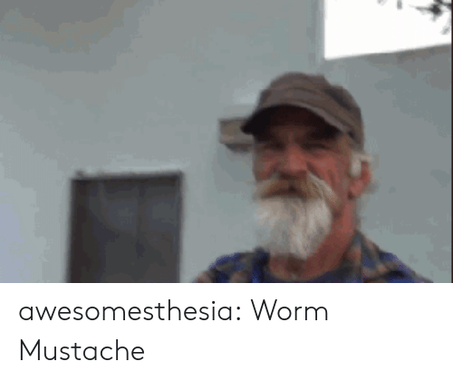 Tumblr, Blog, and Http: awesomesthesia:  Worm Mustache
