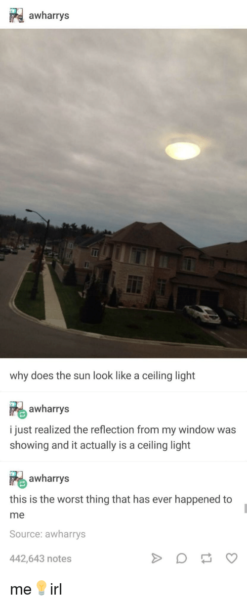 The Worst, Sun, and The Sun: awharrys  why does the sun look like a ceiling light  awharrys  i just realized the reflection from my window was  showing and it actually is a ceiling light  awharrys  this is the worst thing that has ever happened to  me  Source: awharrys  442,643 notes me💡irl