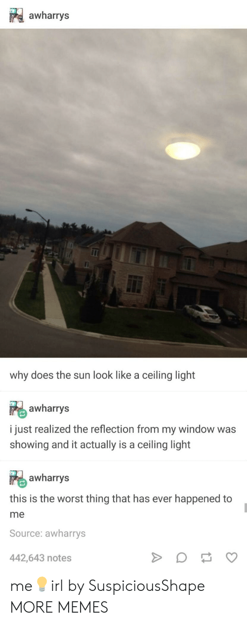 Dank, Memes, and Target: awharrys  why does the sun look like a ceiling light  awharrys  i just realized the reflection from my window was  showing and it actually is a ceiling light  awharrys  this is the worst thing that has ever happened to  me  Source: awharrys  442,643 notes me💡irl by SuspiciousShape MORE MEMES