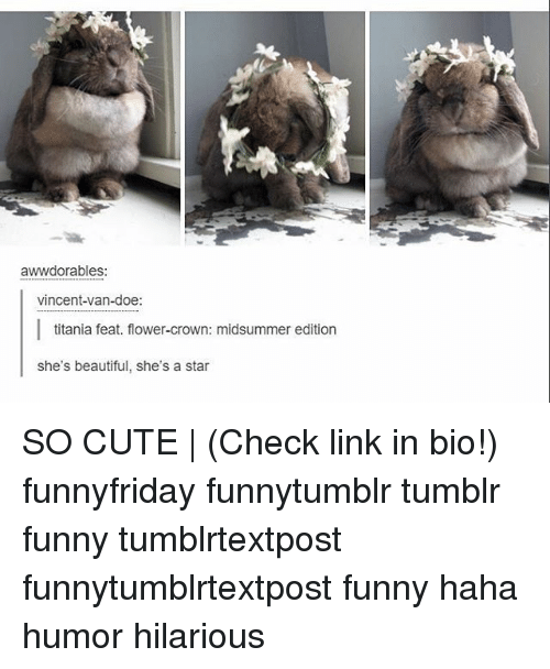 Beautiful, Cute, and Doe: awwdorables:  vincent-van-doe:  titania feat. flower-crown: midsummer edition  she's beautiful, she's a star SO CUTE | (Check link in bio!) funnyfriday funnytumblr tumblr funny tumblrtextpost funnytumblrtextpost funny haha humor hilarious