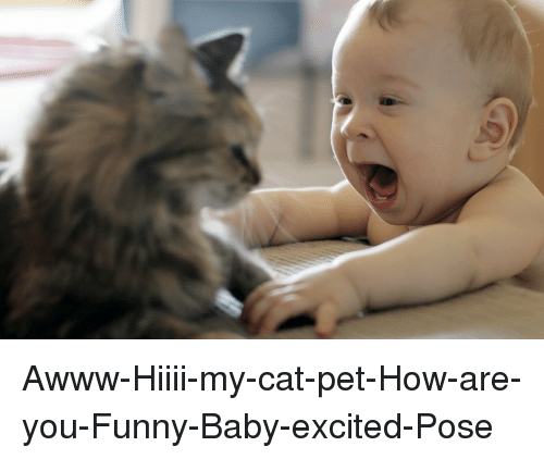 awww hiiii my cat pet how are you funny baby excited pose 3098170 awww hiiii my cat pet how are you funny baby excited pose baby