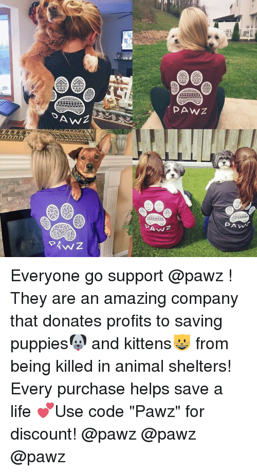 aa0c510cced4 AWZ PAwZ PAWZ PAN PAM Everyone Go Support ! They Are an Amazing ...