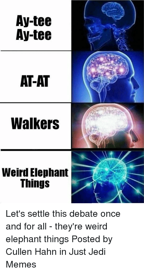 At-At, Jedi, and Memes: Ay-tee  Ay-tee  AT-AT  Walkers  Weird Elephant  Things Let's settle this debate once and for all - they're weird elephant things   Posted by Cullen Hahn in Just Jedi Memes