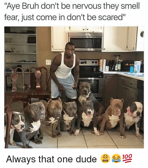 """Bruh, Dude, and Funny: """"Aye Bruh don't be nervous they smell  fear, just come in don't be scared"""" Always that one dude 😩😂💯"""