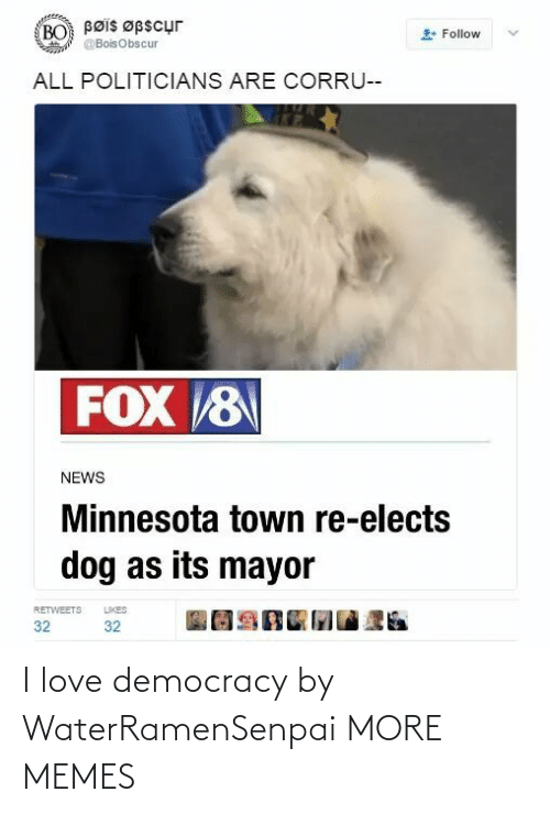 Dank, Love, and Memes: Bøis Øpscur  BO  Follow  @BoisObscur  ALL POLITICIANS ARE CORRU--  FOX 8  NEWS  Minnesota town re-elects  dog as its mayor  LIKES  RETWEETS  32  32 I love democracy by WaterRamenSenpai MORE MEMES