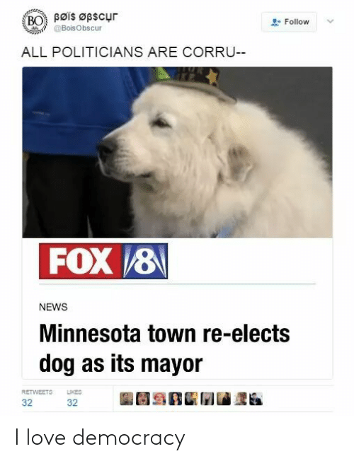 Love, News, and Minnesota: Bøis Øpscur  BO  Follow  @BoisObscur  ALL POLITICIANS ARE CORRU--  FOX 8  NEWS  Minnesota town re-elects  dog as its mayor  LIKES  RETWEETS  32  32 I love democracy