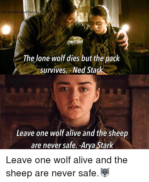 Alive, Memes, and Ned Stark: b/BestofGameofThro  The lone wolf dies but the pack  survives. Ned Stark  Leave one wolf alive and the sheep  are never safe. -Arya Stark Leave one wolf alive and the sheep are never safe.🐺