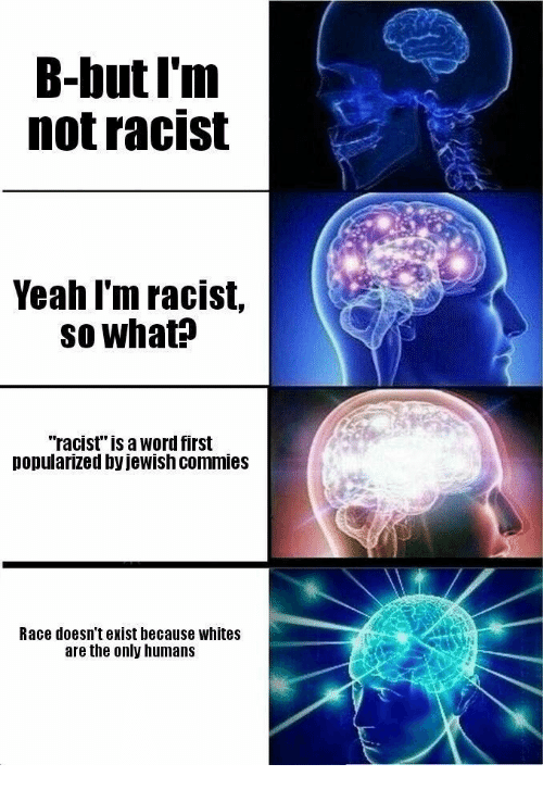 """Yeah, Word, and Racist: B-but I'm  not racist  Yeah l'm racist,  so what?  """"racist"""" is a word first  popularized by jewish commies  Race doesn't exist because whites  are the only humans"""