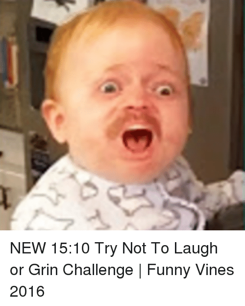 Image of: Try Not Funny Vine And Vines b New 1510 Try Not To Funny New 1510 Try Not To Laugh Or Grin Challenge Funny Vines 2016