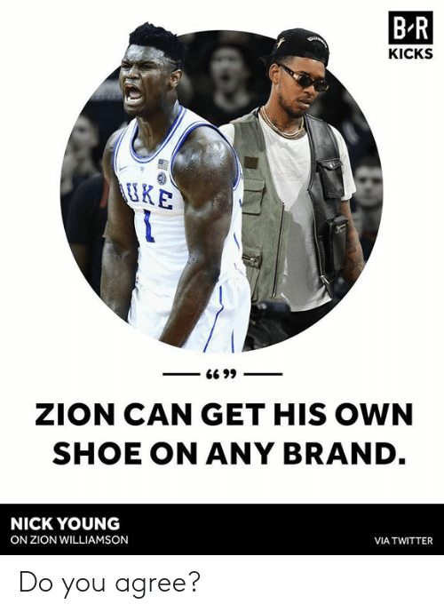 1a2b9b237abd6 B-R KICKS IRE ZION CAN GET HIS OWN SHOE ON ANY BRAND NICK YOUNG ON ...