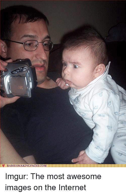 6e089dd430 BABIESMAKINGFACESCOM Imgur the Most Awesome Images on the Internet ...