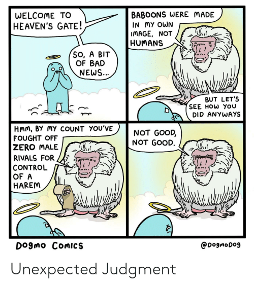 Bad, News, and Zero: BABOONS WERE MADE  IN MY OWN  IMAGE, NOT  HUMANS  WELCOME TO  HEAVEN'S GATE!  So, A BIT  OF BAD  NEWS...  BUT LET'S  SEE HOW YOU  DID ANYWAYS  HMM, BY MY COUNT YOU'VE  NOT GOOD,  NOT GOOD.  FOUGHT OFF  ZERO MALE  RIVALS FOR  CONTROL  OF A  HAREM  DOgmo COMICS  @DogmoDo9 Unexpected Judgment