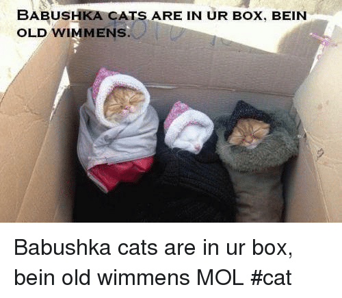 babushka cats are in ur box bein old wim mens 23456804 babushka cats are in ur box bein old wim mens babushka cats are in