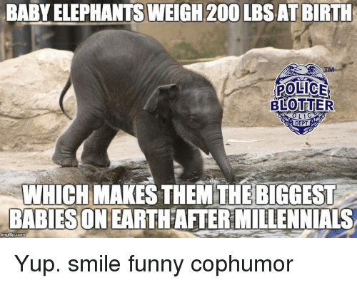 Funny Zoo Memes : ✅ 25 best memes about smile funny smile funny memes
