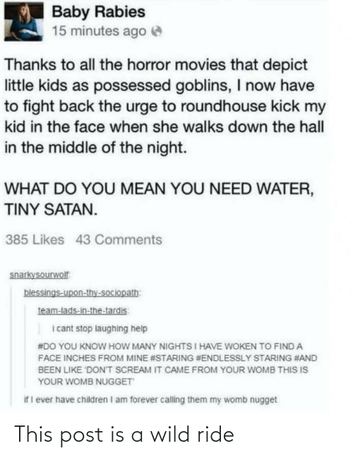 Children, Movies, and Scream: Baby Rabies  15 minutes ago e  Thanks to all the horror movies that depict  little kids as possessed goblins, I now have  to fight back the urge to roundhouse kick my  kid in the face when she walks down the hall  in the middle of the night.  WHAT DO YOU MEAN YOU NEED WATER,  TINY SATAN.  385 Likes 43 Comments  snarkysourwolf  blessings-upon-thy-sociopath:  team-lads-in-the-tardis:  i cant stop laughing help  #DO YOU KNOW HOW MANY NIGHTS I HAVE WOKEN TO FIND A  FACE INCHES FROM MINE #STARING #ENDLESSLY STARING #AND  BEEN LIKE DONT SCREAM IT CAME FROM YOUR WOMB THIS IS  YOUR WOMB NUGGET  if I ever have children I am forever calling them my womb nugget This post is a wild ride
