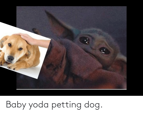 Yoda, Baby, and Dog: Baby yoda petting dog.