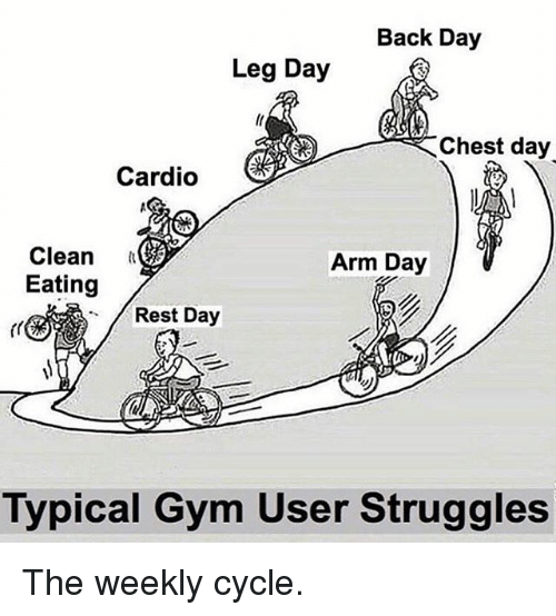 Gym, Memes, and Leg Day: Back Day  Leg Day  Chest day  Cardio  Clean  Eating  Arm Day  Rest Day  Typical Gym User Struggles The weekly cycle.