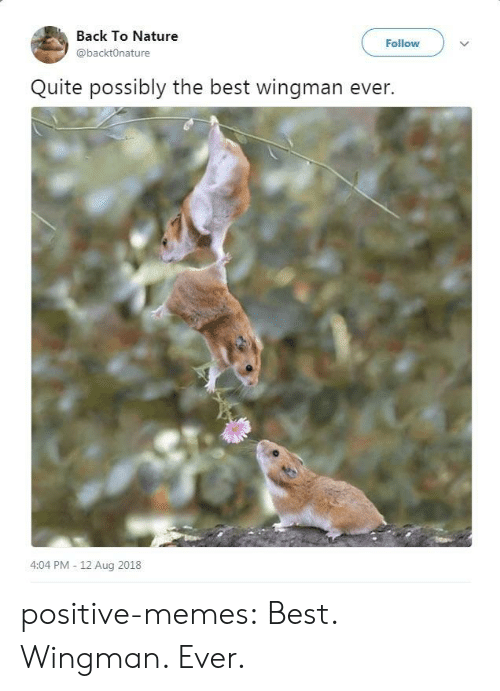Memes, Tumblr, and Best: Back To Nature  @backtOnature  Follow  Quite possibly the best wingman ever.  4:04 PM - 12 Aug 2018 positive-memes:  Best. Wingman. Ever.