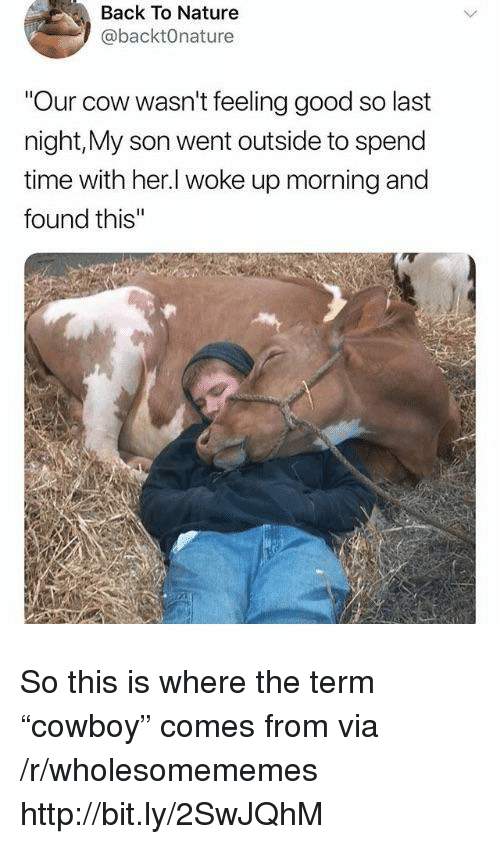 """Good, Http, and Nature: Back To Nature  @backtOnature  Our cow wasn't feeling good so last  night,My son went outside to spend  time with her.l woke up morning and  found this So this is where the term """"cowboy"""" comes from via /r/wholesomememes http://bit.ly/2SwJQhM"""