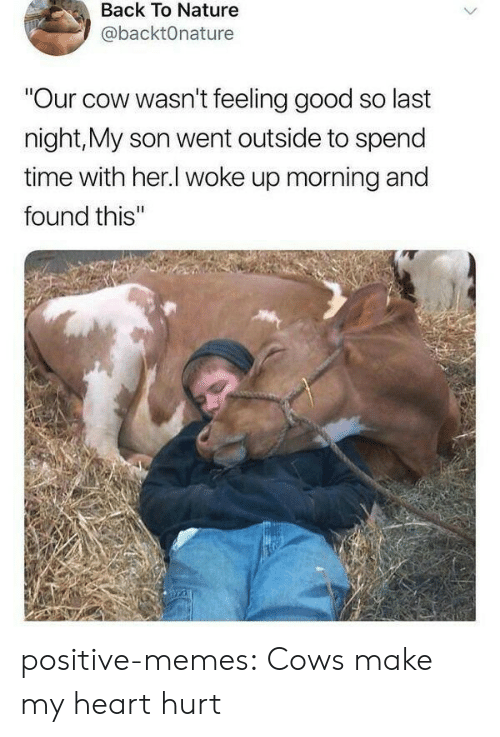"Memes, Tumblr, and Blog: Back To Nature  @backtOnature  ""Our cow wasn't feeling good so last  night,My son went outside to spend  time with her.l woke up morning and  found this'"" positive-memes:  Cows make my heart hurt"