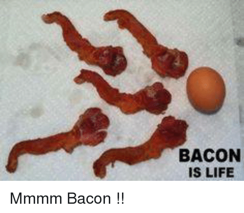 bacon is life mmmm bacon 5430789 bacon is life mmmm bacon !! life meme on me me