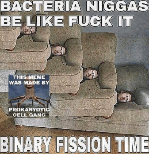 What is fuck fission