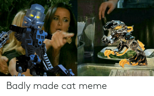 Meme, Cat, and Made: Badly made cat meme