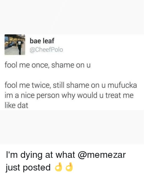 Bae, Memes, and Nice: bae leaf  @CheefPolo  fool me once, shame on u  fool me twice, still shame on u mufucka  im a nice person why would u treat me  like dat I'm dying at what @memezar just posted 👌👌