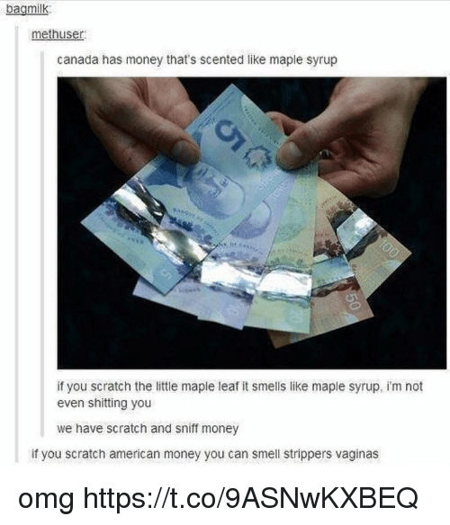 Money, Omg, and Smell: bagmilk  methuser  canada has money that's scented like maple syrup  if you scratch the little maple leaf it smells like maple syrup, i'm not  even shitting you  we have scratch and sniff money  if you scratch american money you can smell strippers vaginas omg https://t.co/9ASNwKXBEQ