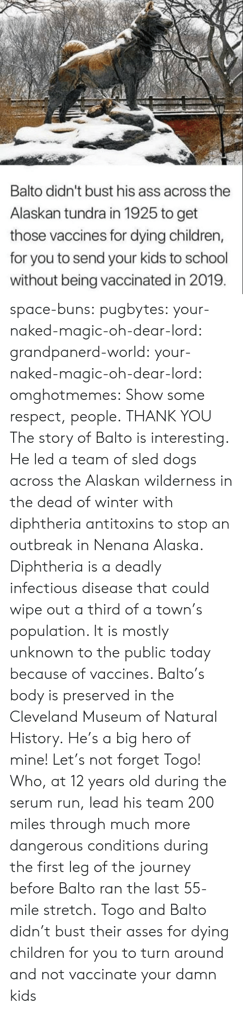 Children, Dogs, and Journey: Balto didn't bust his ass across the  Alaskan tundra in 1925 to get  those vaccines for dying children,  for you to send your kids to school  without being vaccinated in 2019 space-buns:  pugbytes:   your-naked-magic-oh-dear-lord:  grandpanerd-world:   your-naked-magic-oh-dear-lord:  omghotmemes: Show some respect, people.  THANK YOU   The story of Balto is interesting. He led a team of sled dogs across the Alaskan wilderness in the dead of winter with diphtheria antitoxins to stop an outbreak in Nenana Alaska. Diphtheria is a deadly infectious disease that could wipe out a third of a town's population. It is mostly unknown to the public today because of vaccines. Balto's body is preserved in the Cleveland Museum of Natural History.   He's a big hero of mine!   Let's not forget Togo! Who, at 12 years old during the serum run, lead his team 200 miles through much more dangerous conditions during the first leg of the journey before Balto ran the last 55-mile stretch.   Togo and Balto didn't bust their asses for dying children for you to turn around and not vaccinate your damn kids