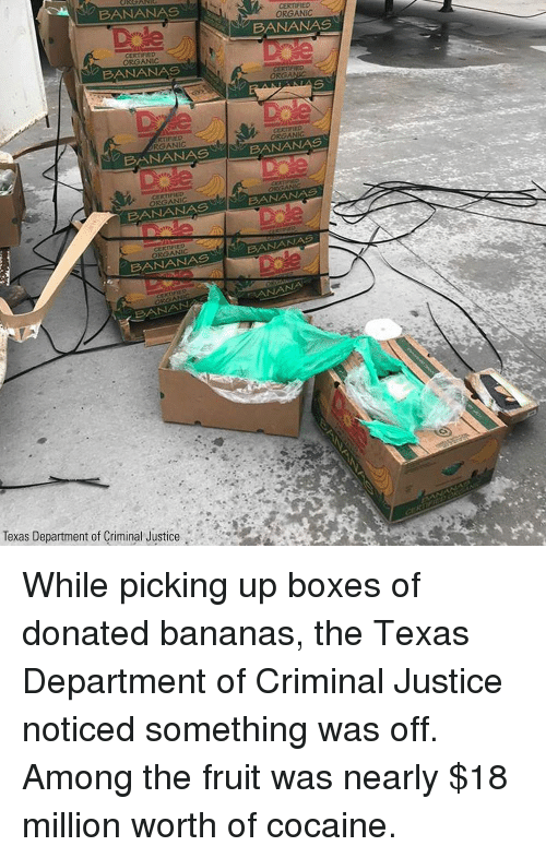 Memes, Banana, and Cocaine: BANANAS  CERTIFIED  ORGANIC  Drle  BANANAS  ORGANIC  BANANAS  ORGA  RTİFIED  RGANIC  ORGANIC  BANANA  S  BANANAS  ORGANIC  BANANAS  BANANASeB  ORGANIC  u'  'M' BANANAら  BANANAS  BANAN  Texas Department of Criminal Justice . While picking up boxes of donated bananas, the Texas Department of Criminal Justice noticed something was off. Among the fruit was nearly $18 million worth of cocaine.
