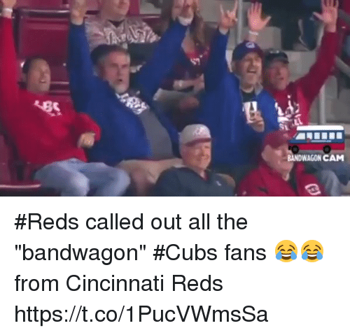 bandwagon cam reds called out all the bandwagon cubs fans 19558187 25 best cubs in world series last memes cubs fans memes, last